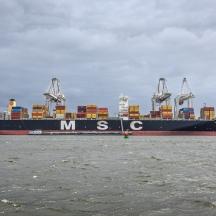 MSC Palak, Maasvlakte